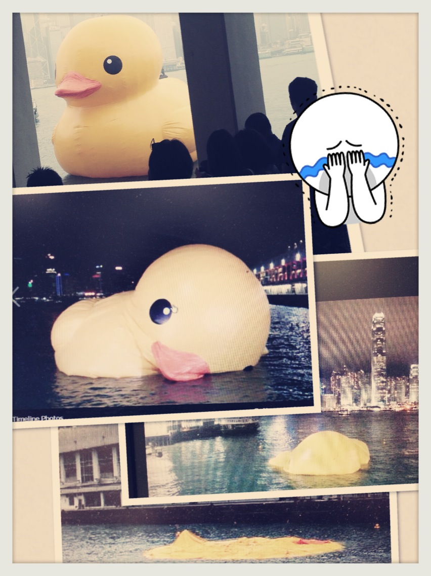 P: Rubber Duck Tragedy